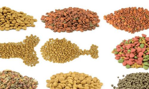 quy trình nhập khẩu thức ăn chăn nuôi